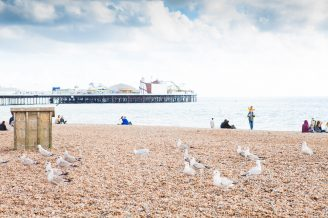 Brighton Wedding Venues