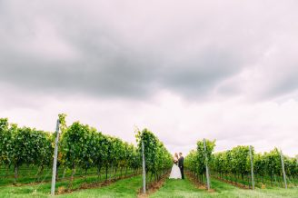 Court Garden Vineyard Wedding